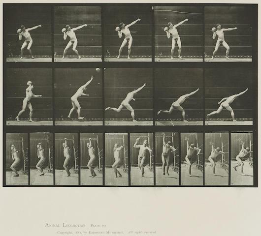 Eadweard Muybridge (British, 1830-1904); from Animal Locomotion, Pl. 174; 280; 314; (3)