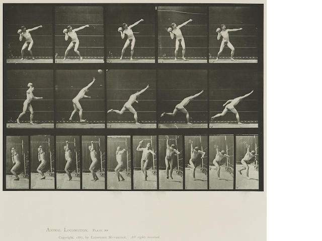 Eadweard Muybridge (British, 1830-1904); from Animal Locomotion, Pl. 174; 280; 314; (3)