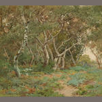 Sydney Janis Yard (American, 1855-1909) Oak Grove 16 x 18in