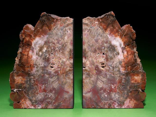 Petrified Wood bookends, Arizona