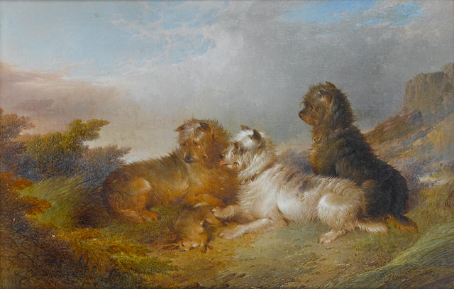 Paul Jones (British, fl. 1856-1879) Terriers with game 30.8 x 20.3cm (12 1/8 x 8in)