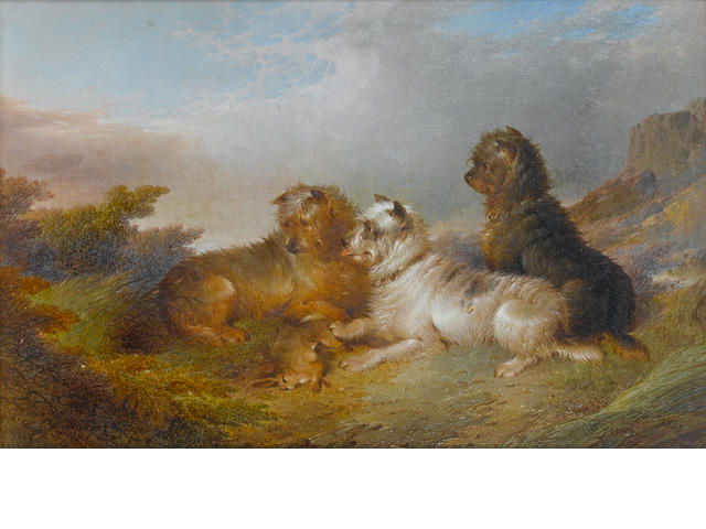 Paul Jones (British, active 1856-1879) Terriers with game 12 1/8 x 8 in. (30.8 x 20.3 cm.)
