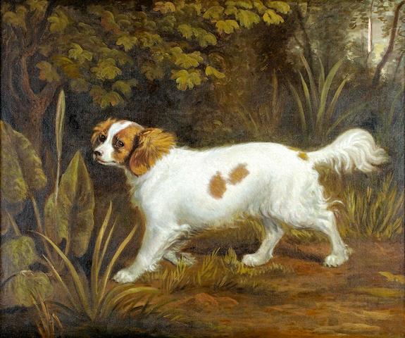 (n/a) British School, 19th century Cavalier King Charles Spaniel in a landscape 25 1/2 x 30 in. (64.1 x 76.2 cm)