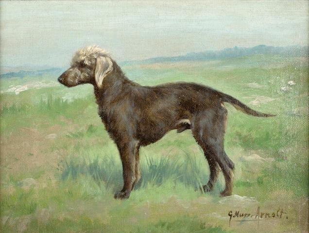 Gustav Muss-Arnolt (American, 1858-1927) A Bedlington Terrier in a landscape 9 x 12 in. ( 22.8 x 30.5)