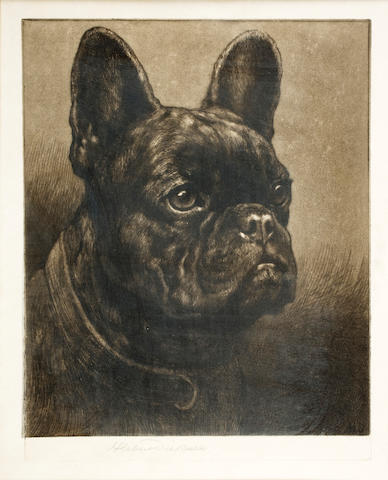 Herbert Thomas Dicksee, R.E. (British, 1862-1942) 'Bunker' a French Bulldog 10 1/2 x 9in (26.2 x 22.8cm)
