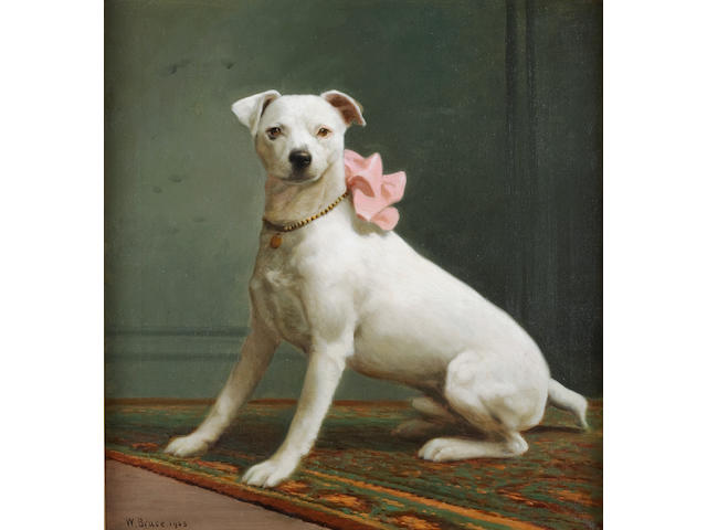 William Bruce (American, 1861-1911) English White Terrier 25 x 23 in. (63.5 x 58.4 cm)