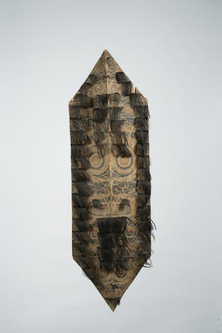 Two Dayak war shields