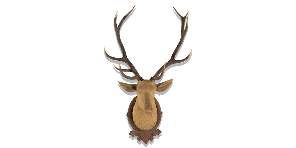 A Black Forest carved wood and natural horn mounted stag trophy head