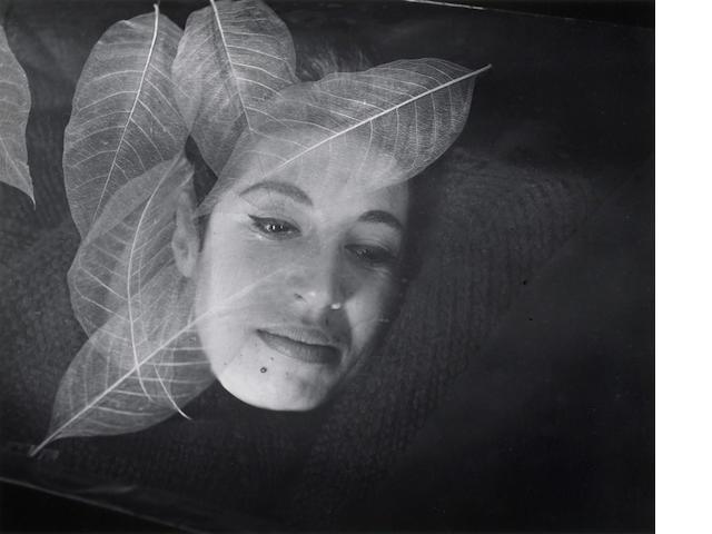 Imogen Cunningham, Taiwan Leaves