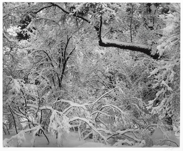 Ansel Adams (American, 1902-1984); Fresh Snow, Yosemite Valley, California;