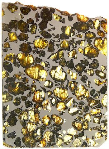 Esquel Meteorite Slice
