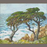 Mary DeNeale Morgan (1868-1948) Twin Cypress 20 x 24in