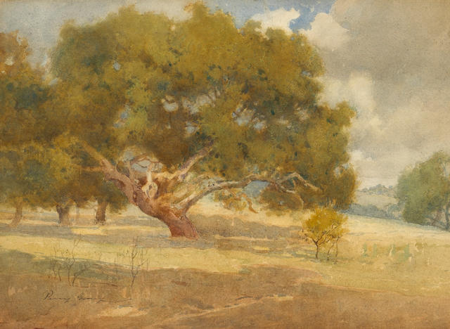 Percy Gray (1869-1952) Majestic oaks 12 3/4 x 17 1/2in
