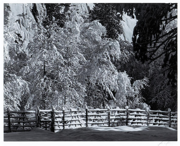 Ansel Adams (American, 1902-1984); Trees and Fence, Winter, Yosemite National Park;
