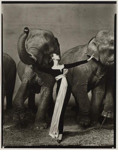 Richard Avedon (American, 1923-2004); Dovima with Elephants, Cirque d'Hiver, Paris;