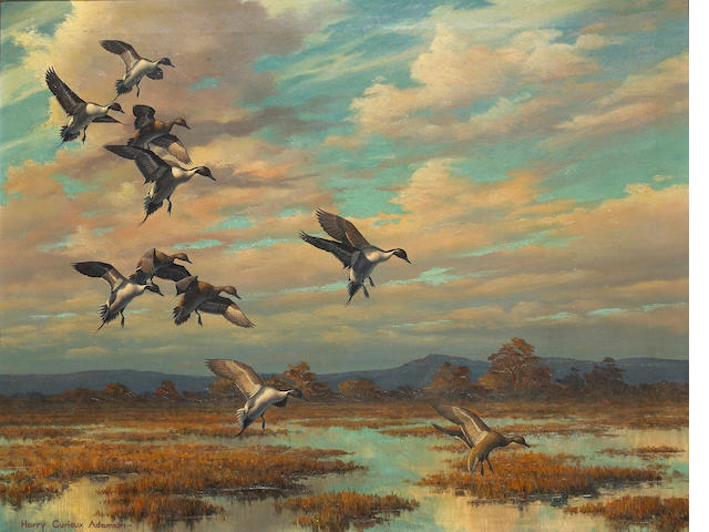 Harry Curieux Adamson (1916- ), Wingin in sprig, o/c, signed