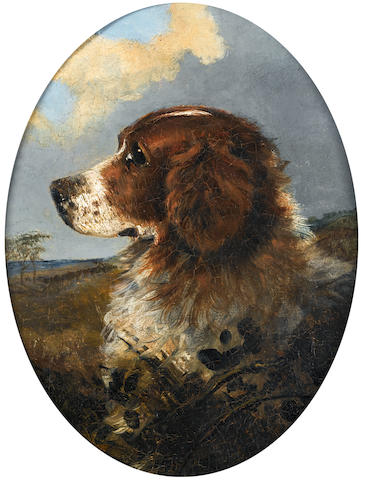 Attributed to George Armfield (British, 1810-1893) Head of a Springer Spaniel 10 1/16 x 8 1/4 in. (25.5 x 21 cm.)