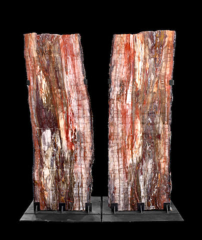 Magnificent Pair of Petrified Wood Logs