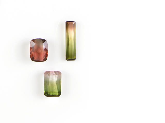 Group of Three Bi-Color Tourmalines from Various Localities