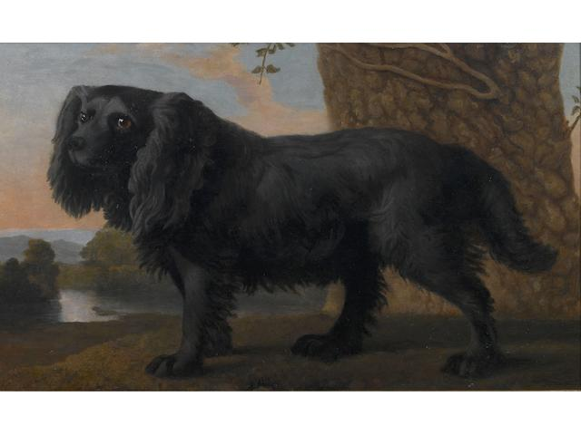 Attributed to George Stubbs, ARA (British, 1724-1806) A black Spaniel in a landscape 16 3/4 x 27 3/4 in. (42.5 x 70.5 cm.)