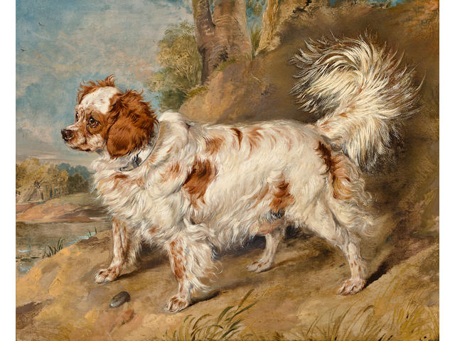 (n/a) Sir Edwin Henry Landseer, RA (London 1802-1873) A dog of the Marlborough breed 21 1/4 x 25 1/2 in. (54 x 65 cm.)