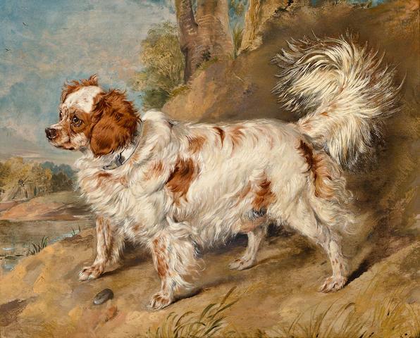 (n/a) Sir Edwin Henry Landseer, RA (London 1802-1873) A dog of the Marlborough breed 21 1/4 x 25 1/2 in. (54 x 65 cm.)