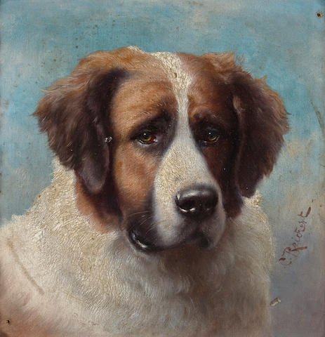 Carl Reichert (Austrian, 1836-1918) Portrait of a St. Bernard  6 1/4 x 6 1/4 in. (15.9 x 15.9 cm.)