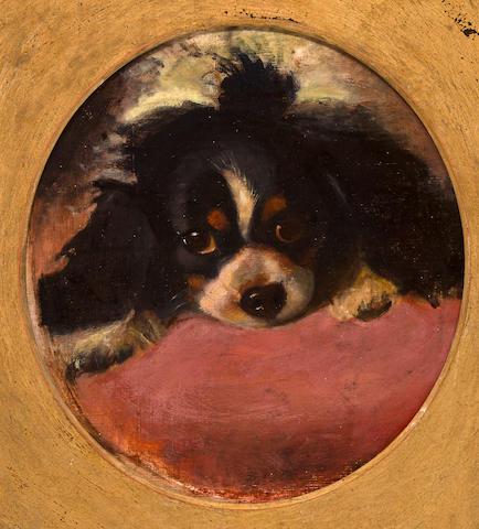 Follower of George Earl (British, 1824-1908) Cavalier King Charles Spaniel 15 3/34 x 14 1/4 in. (40.0 x 36.2 cm.)