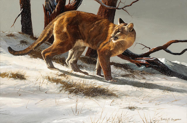(n/a) Gary R. Swanson (American, born 1941) Mountain lion in the snow 24 x 36in overall: 33 1/4 x 45in