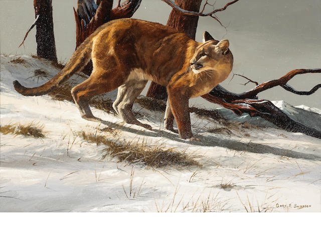 Gary R. Swanson (American, born 1941) Mountain lion in the snow 24 x 36in overall: 33 1/4 x 45in