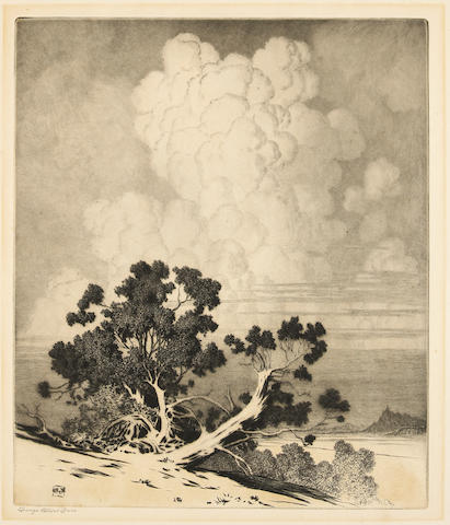 George Elbert Burr (American, 1859-1939); Winter (no. 1); The Leaning Tree; Group of Pines; Dead Pines; Sketch on the Apache Trail; Desert Clouds; Mountain of the Holy Cross; (7)