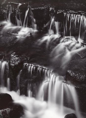 Ansel Adams photograph: Fern Spring, Dusk, Yosemite Valley