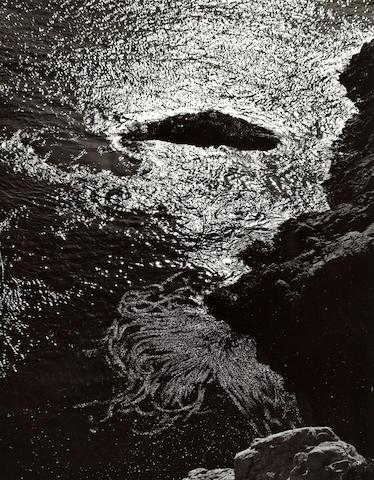 Edward Weston (American, 1886-1958); Kelp, China Cove, Pt. Lobos;
