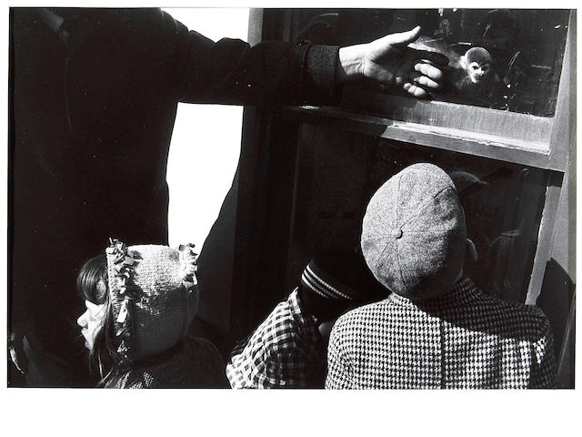 Garry Winogrand (American, 1928-1984); Untitled, from The Animals;