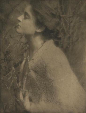 Alfred Stieglitz (American, 1864-1946); Studies from Camera Work; (16)