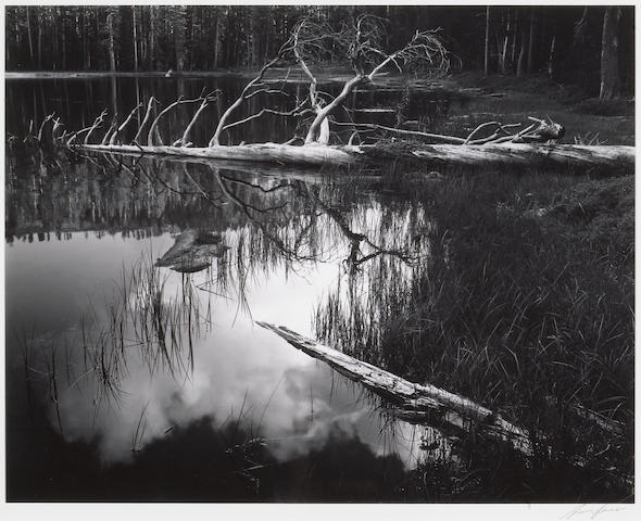 Ansel Adams (American, 1902-1984); Siesta Lake, Yosemite National Park;