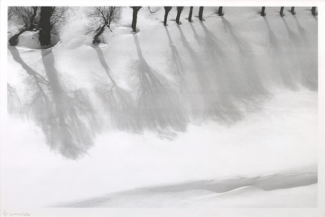 Abbas Kiarostami (Iran, born 1940) Untitled (from the Snow White series), 1978 - 2004 32 1/2 x 41 3/4in (82.5 x 106cm)