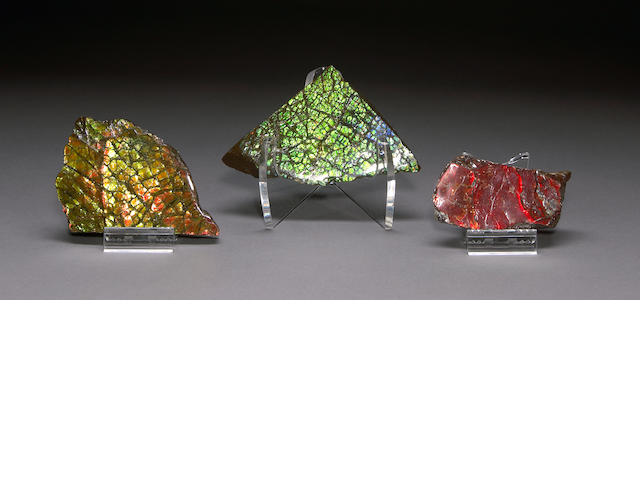 3 Ammolite Sections w/ stands