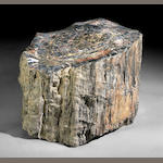 Petrified Wood Stump, 30 x 25 x 19
