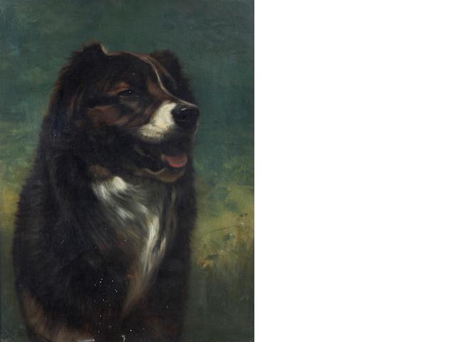 John Henry Dolph (American, 1835-1903) A study of a dog