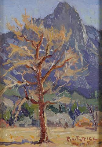 Scott Burdick Yosemite, California  8 x 6in