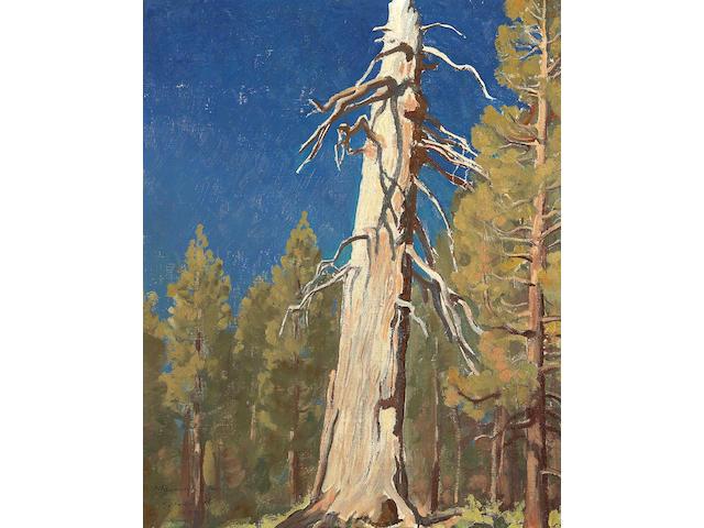 Maynard Dixon (1875-1946) Fallen Leaf, 1933 19 1/4 x 15 1/2in