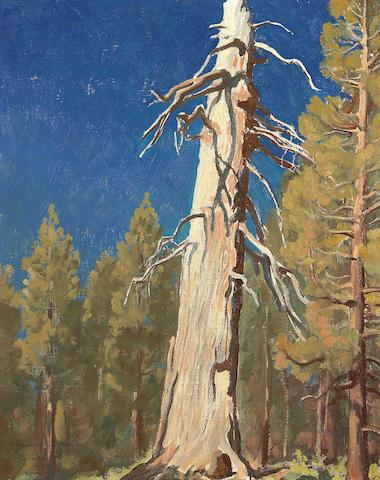 (n/a) Maynard Dixon (1875-1946) Fallen Leaf, 1933 19 1/4 x 15 1/2in