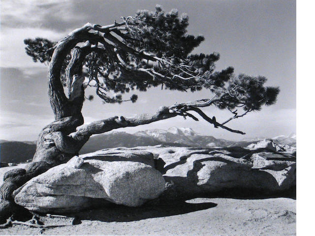 (2) Ansel Adams photos;