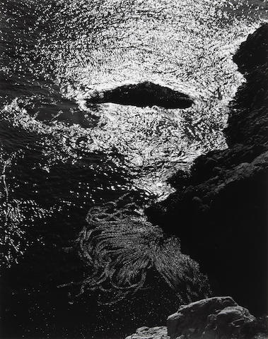 Edward Weston (American, 1886-1958); Kelp, China Cove, Pt. Lobos;