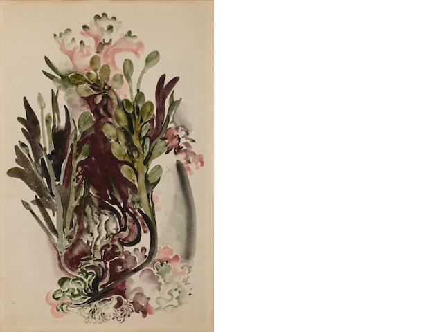 Georgia O'Keeffe (American, 1887-1986) Seaweed II 18 5/8 x 12 3/8 in