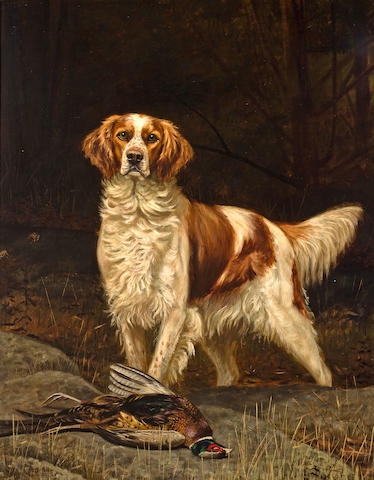 Alexander Pope (American, 1849-1924) An English Setter in a field 46 x 36 in. (116.8 x 91.4 cm.)