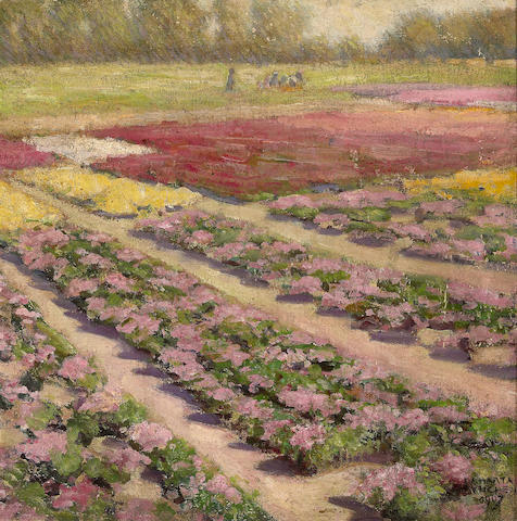 Felix Albrecht Harta, Landscape with rows of pink flowers, oil on canvas