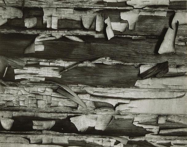 Brett Weston (American, 1911-1993); Peeling Paint;