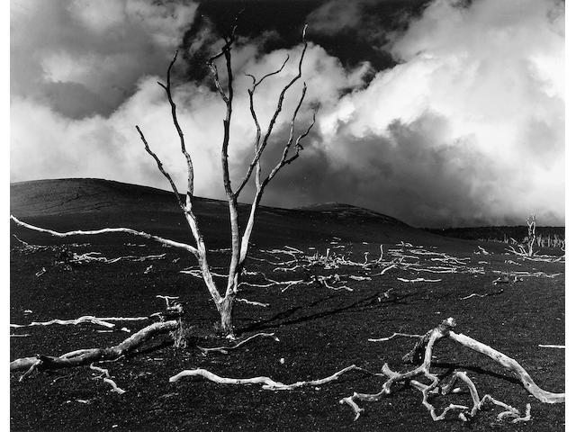 Brett Weston (American, 1911-1993); Volcanic Devastation, Hawaii; Landscape, Hawaii; (2)